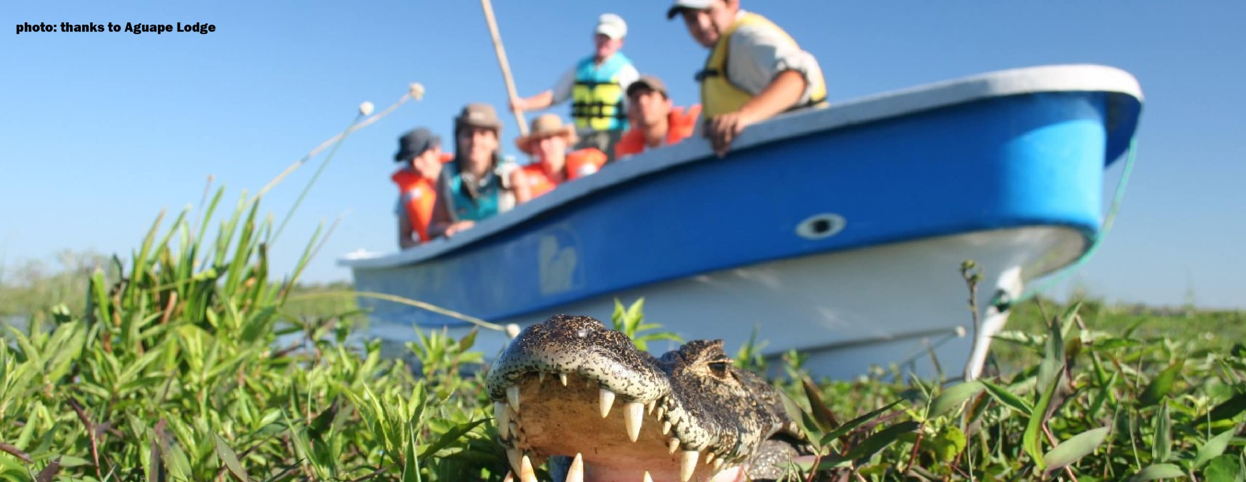 Boat navigations in Ibera Wetlands - RipioTurismo Incoming tour operator Argentina