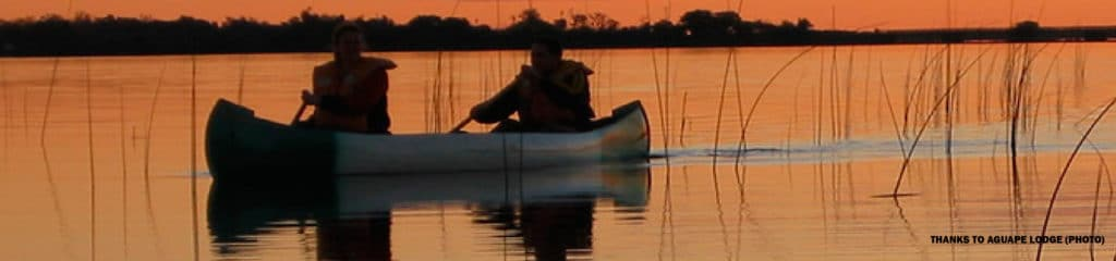 Ibera Wetlands, by ripioturismo incoming tour operator Argentina DMC