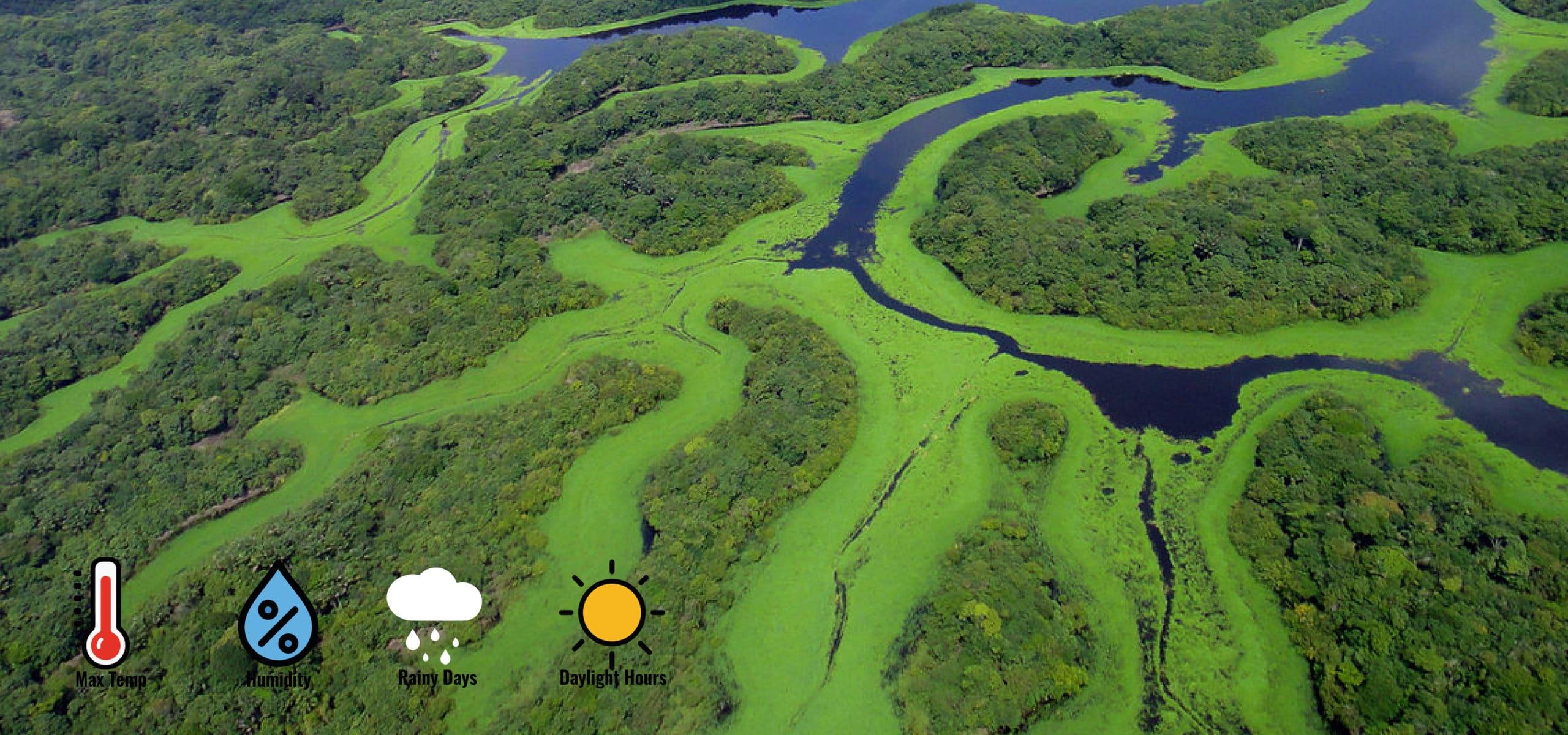 Weather in Manaos, Amazonas. RipioTurismo Incoming Tour Operator Brazil