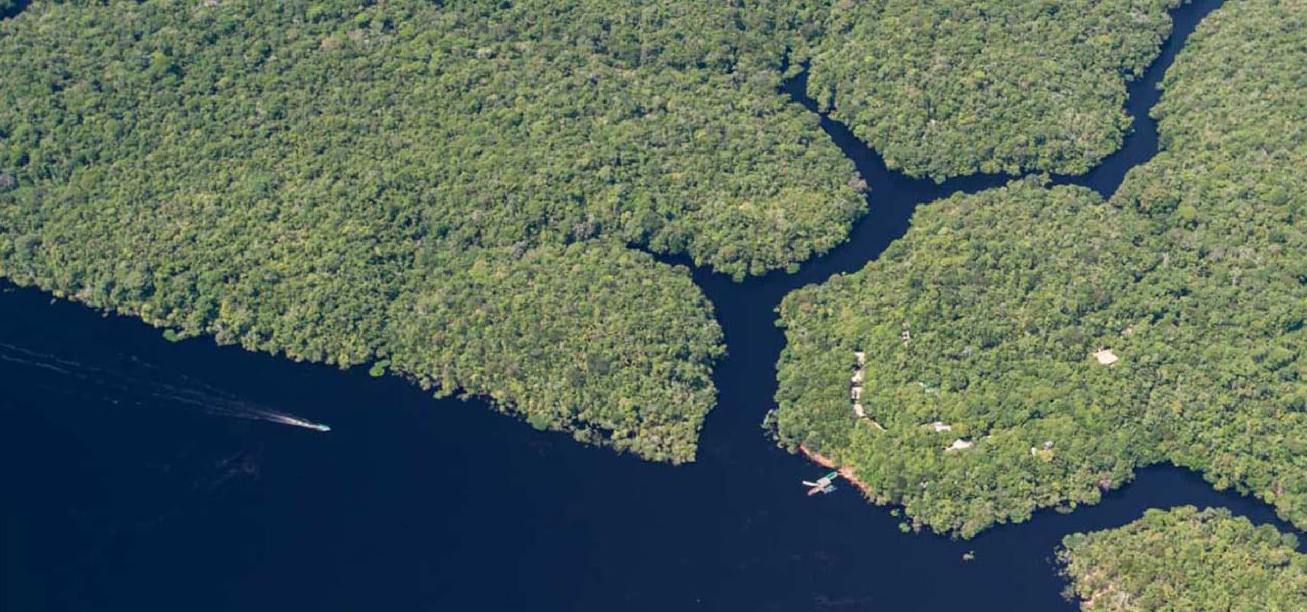anavilhanas national park, Amazonas - RipioTurismo DMC for Brazil