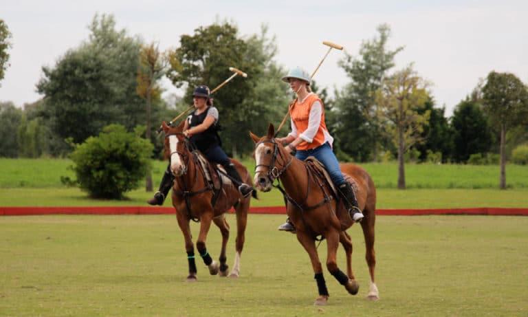 Argentina Polo Day 1_Mesa de trabajo 1