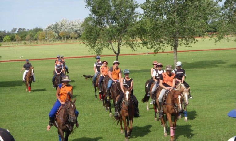 Argentina Polo Day 4_Mesa de trabajo 1