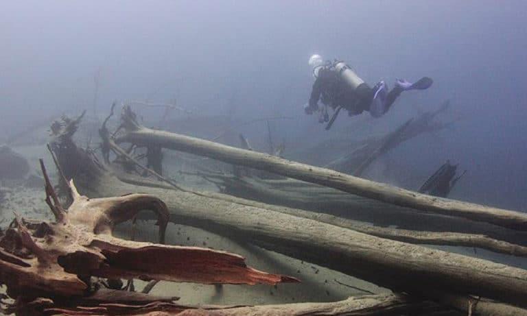 Diving in Bariloche 2_Mesa de trabajo 1