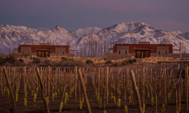 Full day wine experience in Uco Valley_Mesa de trabajo 1