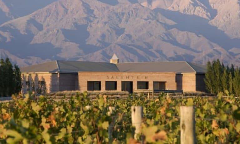 Full day wine experience in Uco Valley_Mesa de trabajo 2_Mesa de trabajo 1