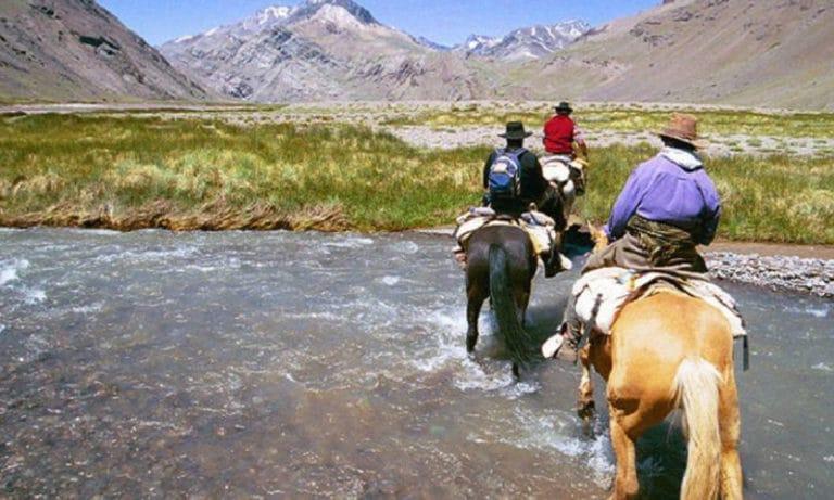 Horseback Riding among vineyards in Mendoza 1_Mesa de trabajo 1