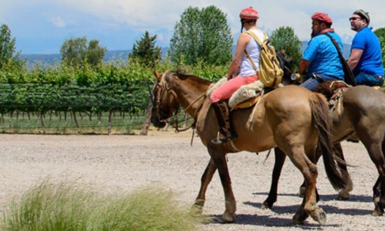 Horseback riding among vineyards in Mendoza 3_Mesa de trabajo 1