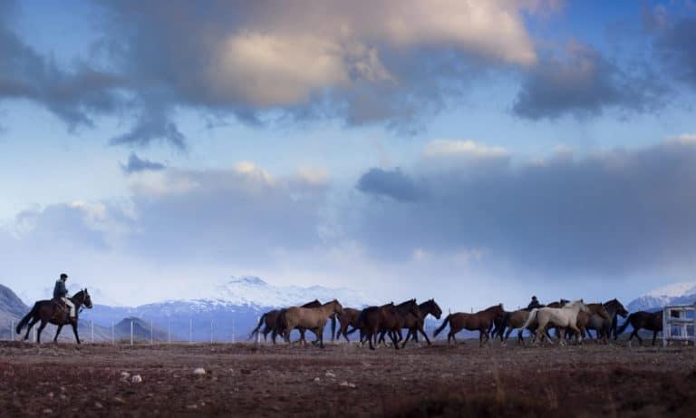 estancia cristina horseback riding 3_Mesa de trabajo 1