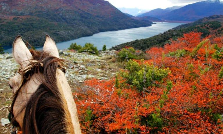 horseback riding in Bariloche 1_Mesa de trabajo 1