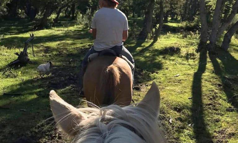 horseback riding in bariloche 4_Mesa de trabajo 1