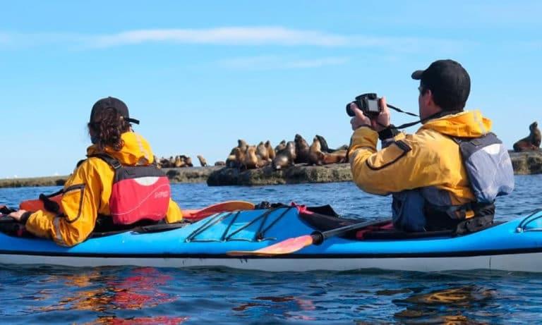 kayaking in puerto piramides 1_Mesa de trabajo 1