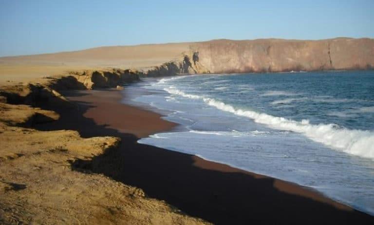 paracas national park and ballestas islands_Mesa de trabajo 1