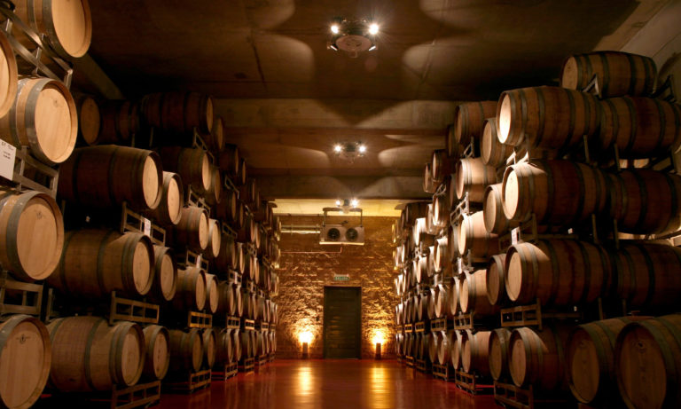 wine experience in mendoza 2_Mesa de trabajo 1