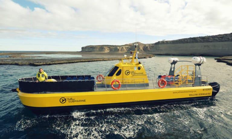 yellow submarine 3_Mesa de trabajo 1