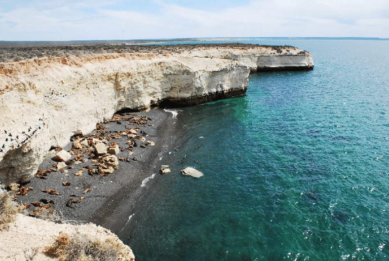 Punta Loma - Sea Lions