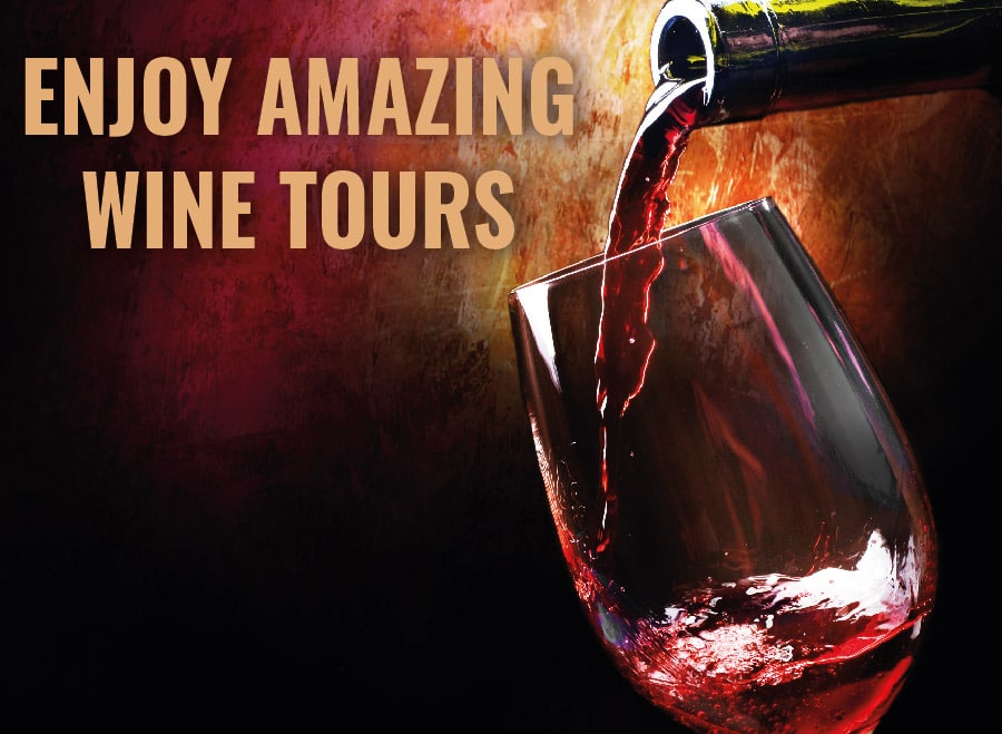 Enjoy wine tours to visit Argentina and Chile