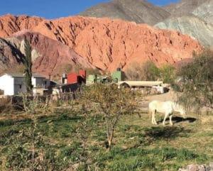 Salta & Argentinian Northwest