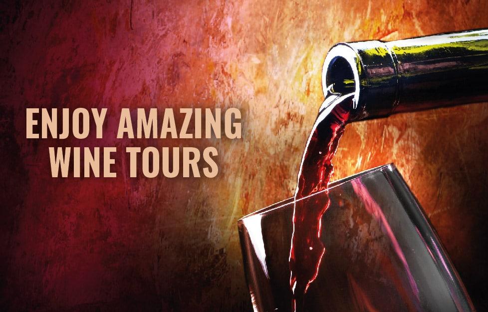enjoy amazing wine tours mendoza_Mesa de trabajo 1