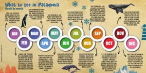 PATAGONIA MONTH BY MONTH