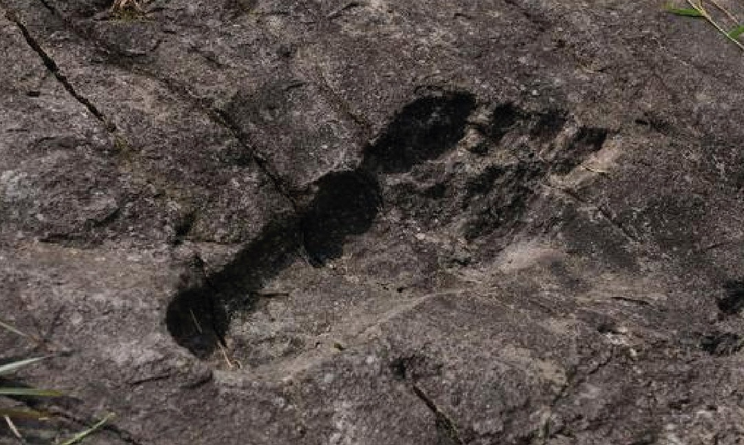 The origins of the name Patagonia