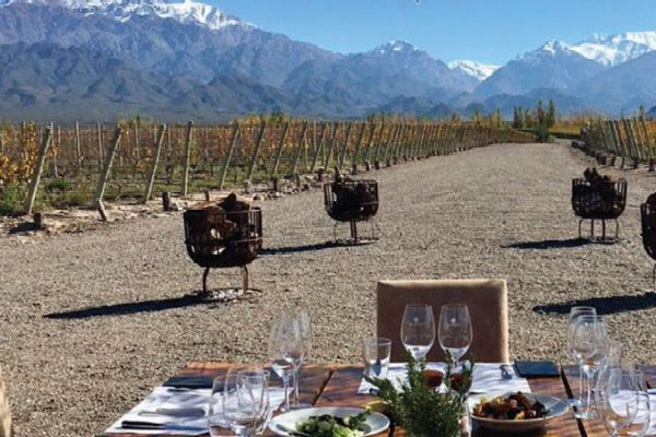 Wine Tour in Casa de Uco, Mendoza